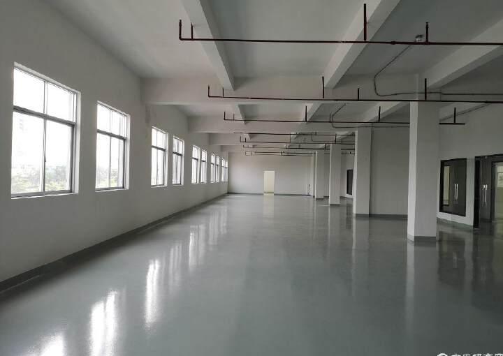 沙井后亭步涌精装修写字楼240平米图片3