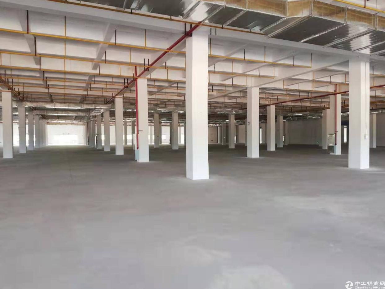 光谷15000平厂房,可生产加工