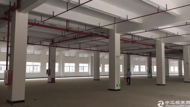 小金新出楼上全新厂房证件齐全3200平方