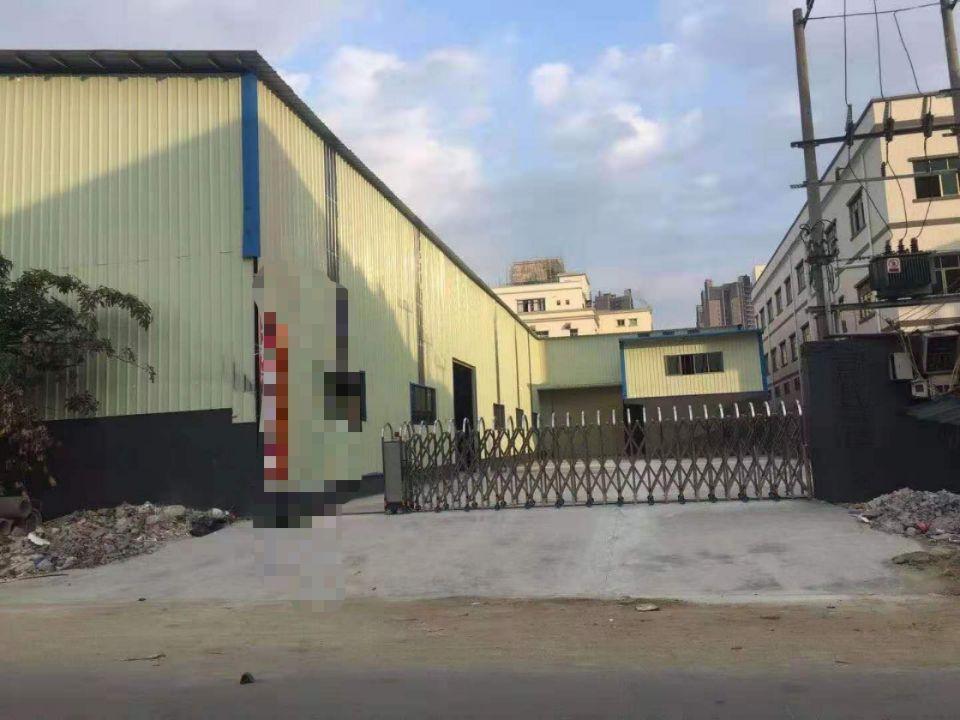 园洲独院单一层厂房1500平米,宿舍600平米
