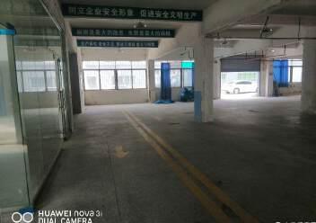 龙岗区龙西清水路边750平方厂房出租图片3