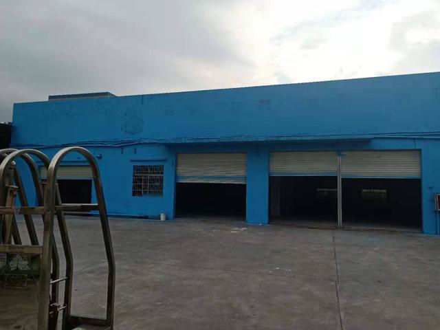 原房东单一层钢构厂房招租,面积2500,电315KW