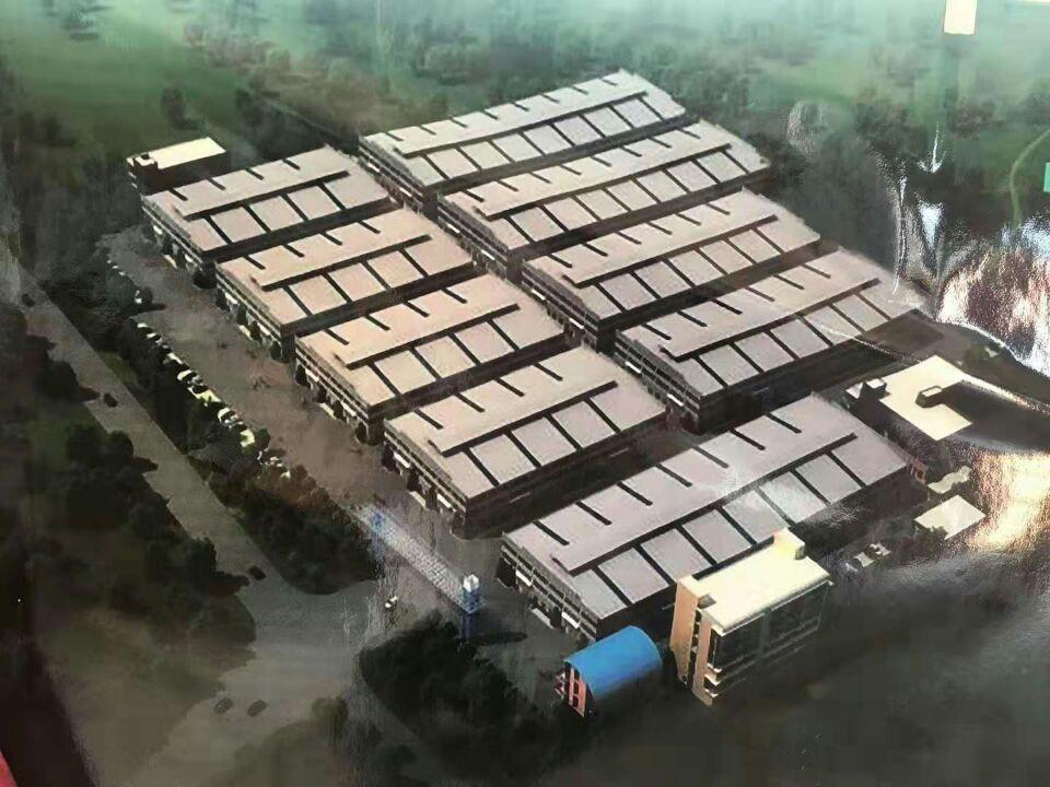 广东省江门市大型工业园独院钢构9栋30万平方