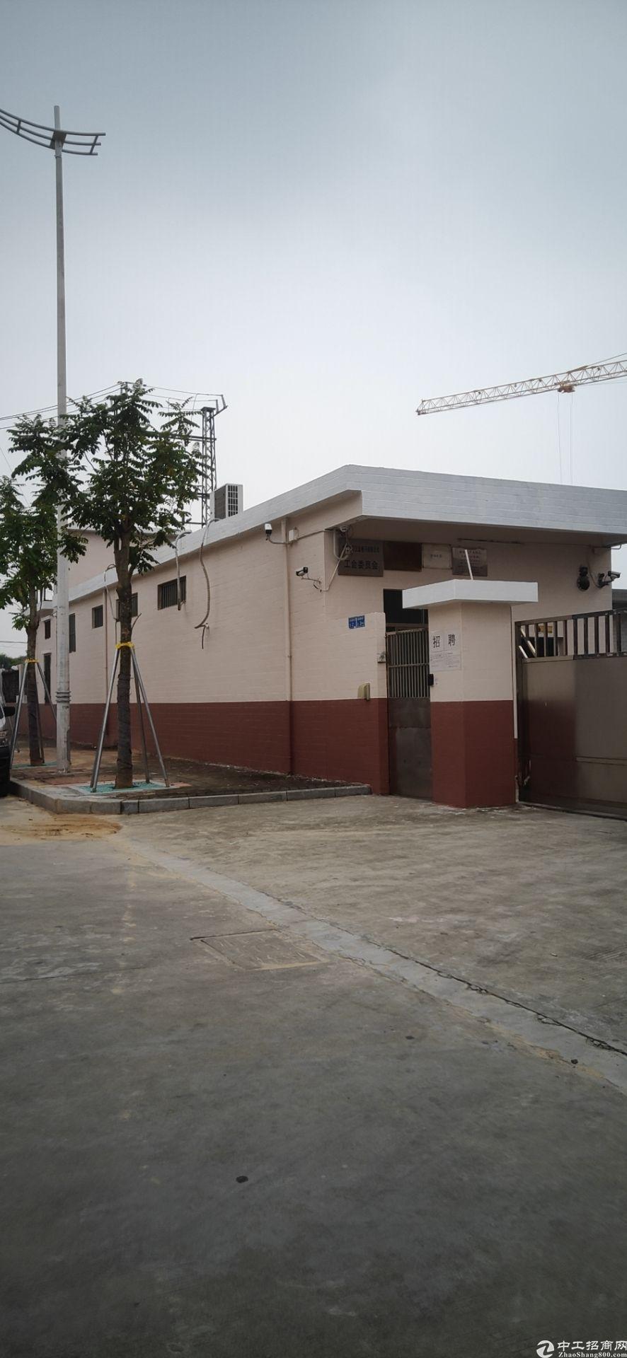 塘厦镇独院钢构售 占地面积:12000㎡ 厂房出售