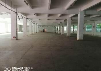 龙岗区龙西清水路边750平方厂房出租图片1