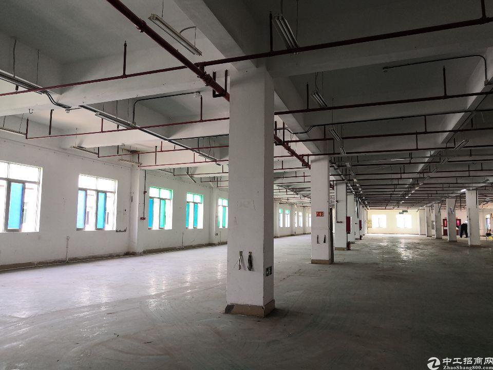 (出租)1300整层教育培训工作室商务办公隆重招商