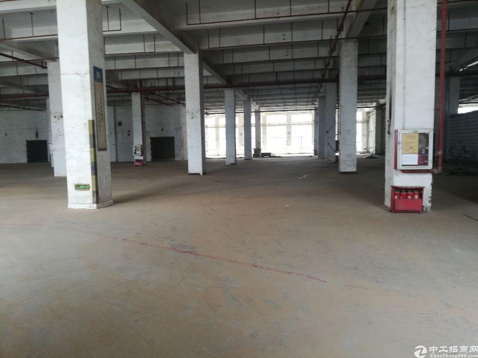 坪山沈海高速坑梓出口标准红本厂房一仓库5300平方出租带喷淋