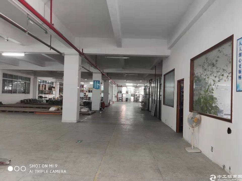 石碁独院标准厂房招租一楼层高5米可分租过环评