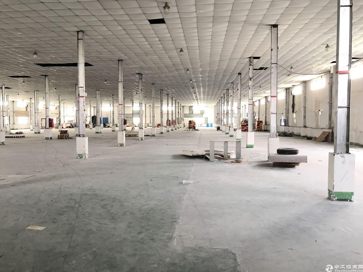 龙华清湖园区新出楼上5000平,适合做物流、仓库等