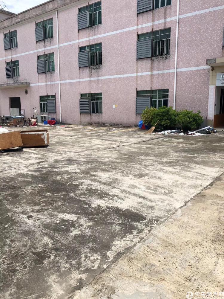 谢岗标准厂房两栋总面积14600平方,可分租可办环评证件齐全