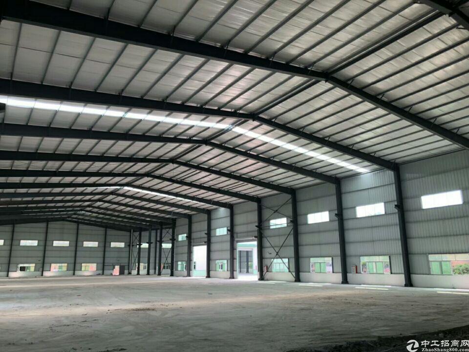 中堂镇新出钢结构厂房滴水12米3500平方招租水电齐全
