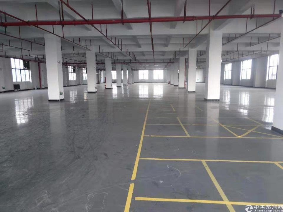 惠州市惠城区水口镇2000平方一楼出租