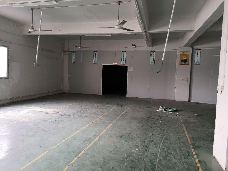 长安沙头,新出楼上标准厂房,带简单装修,水电到车间-图2