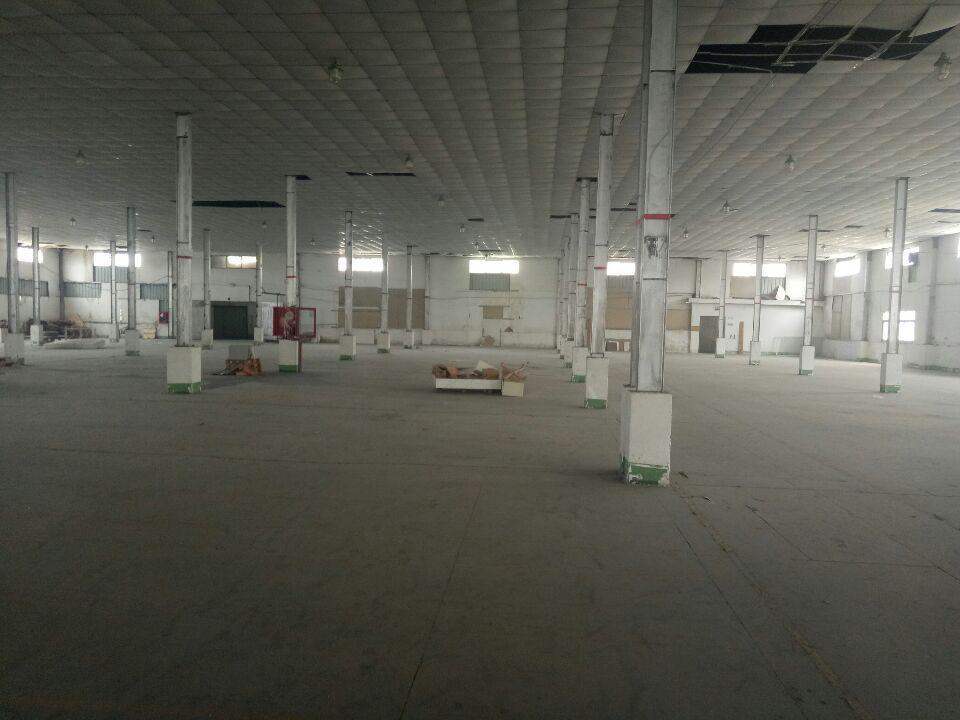 龙华汽车站旁单5000平方仓库