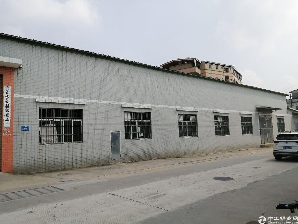 31东莞市茶山镇新出原房东单一层厂房