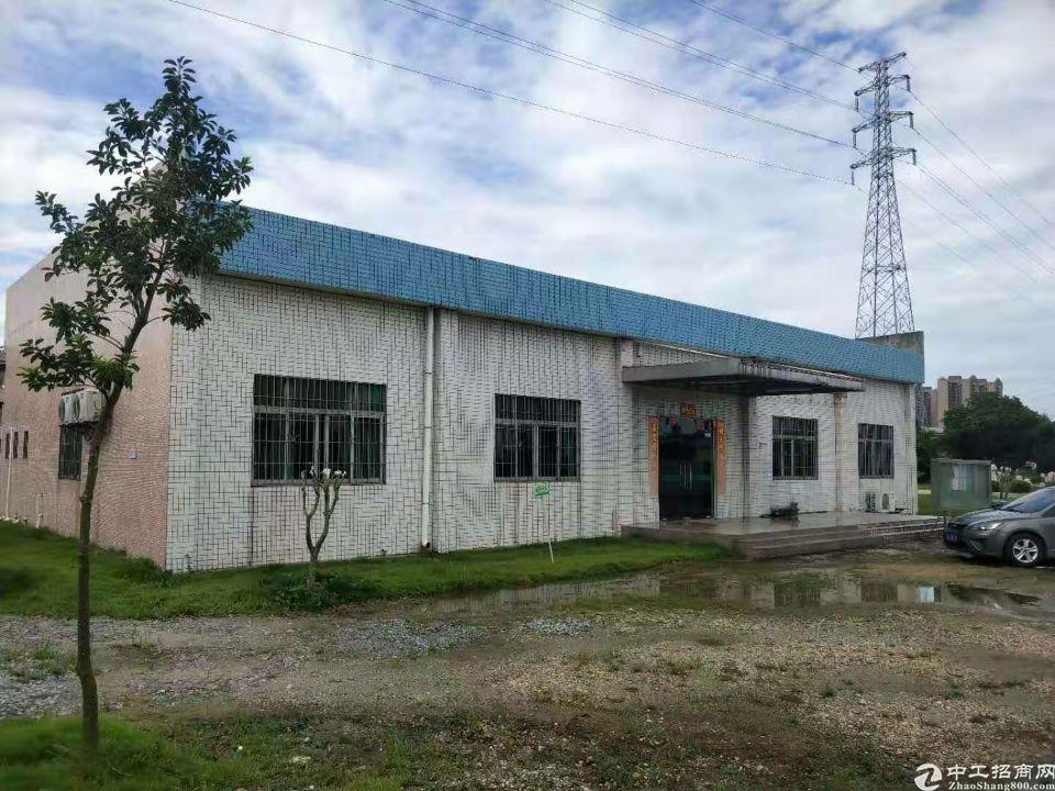石排新出厂房占地面积40000平方,建筑面积11000平方