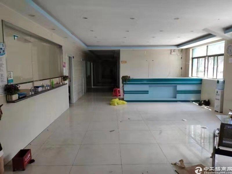 观澜福民机荷高速入口处新出花园式标准厂房2000平方出租