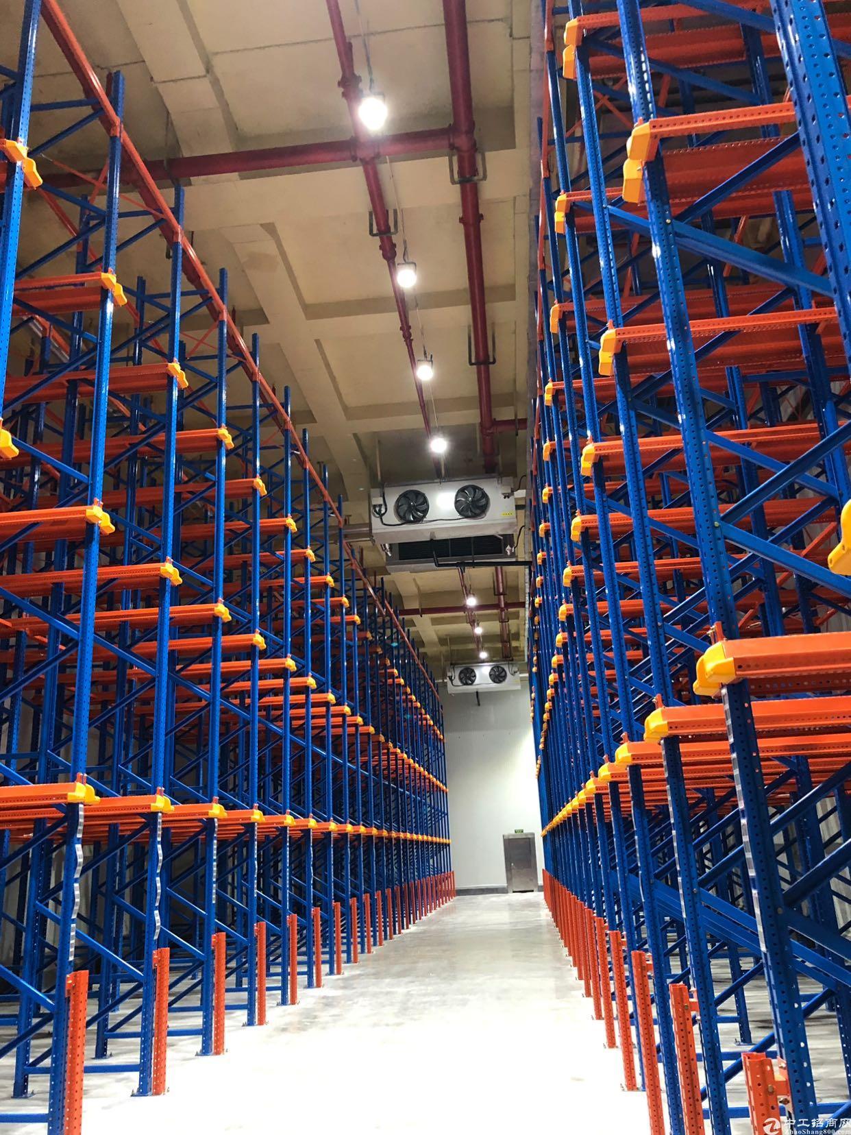 广州市白云区层高9米仓库及冷库出租