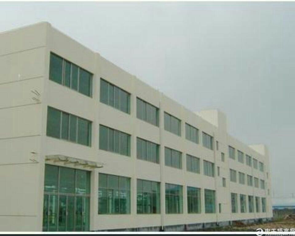 广州市南沙区靓厂房出售
