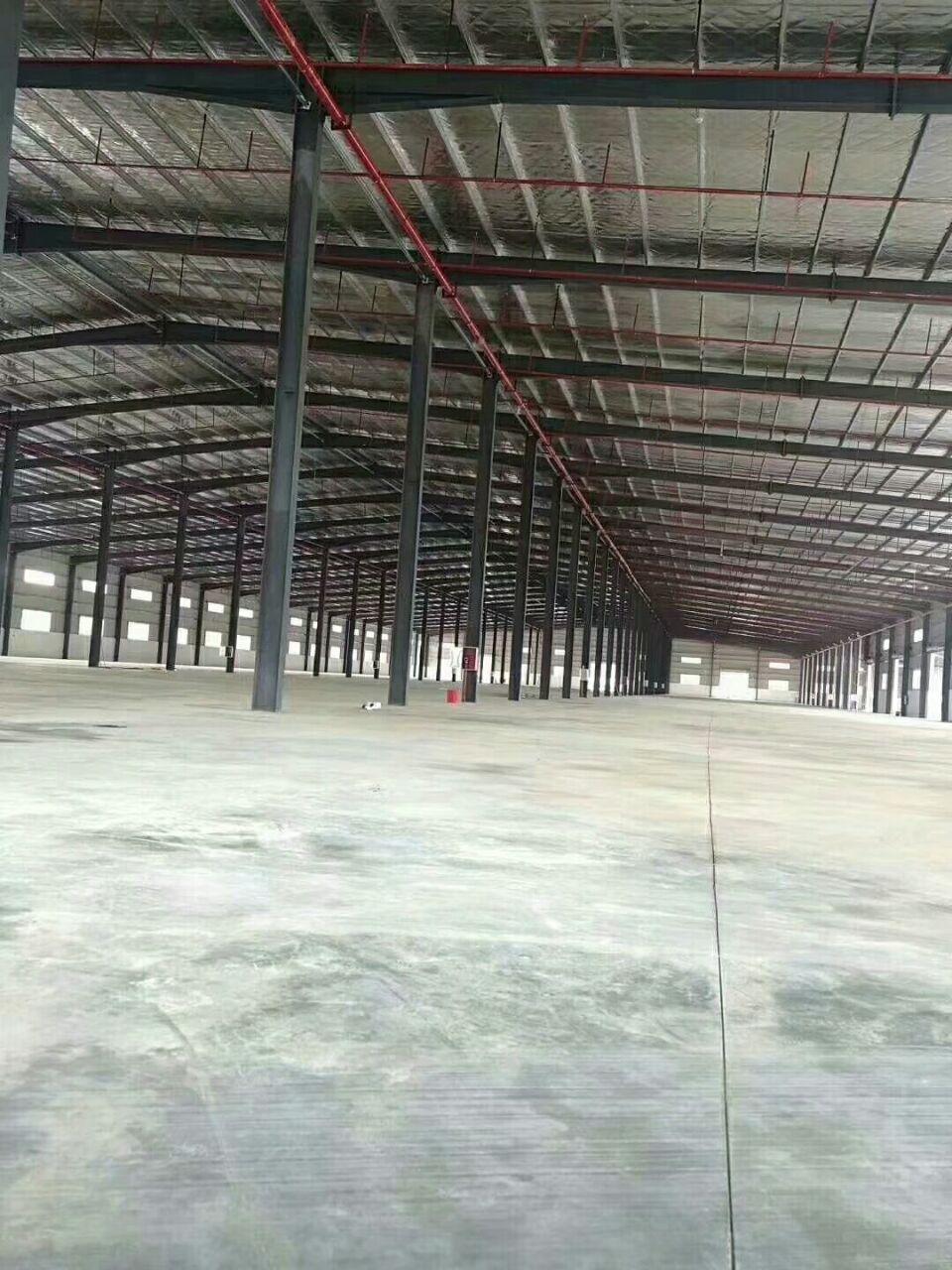 惠州大亚湾正规物流仓库12米高钢结构16000平方