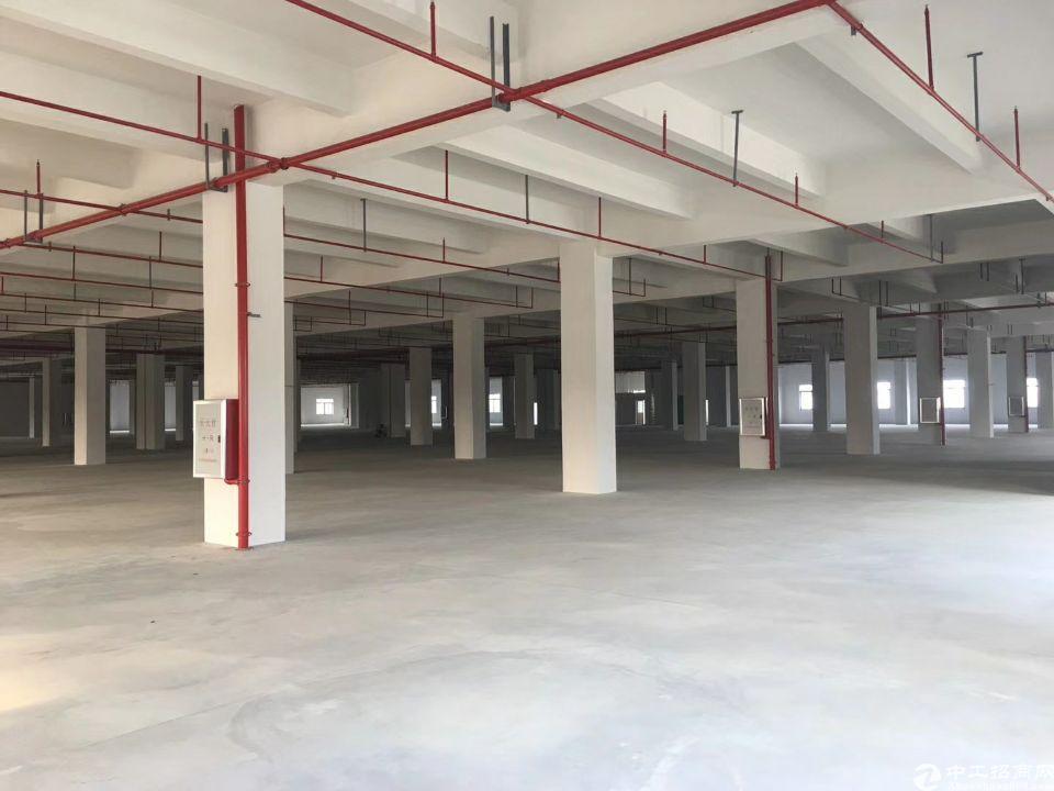佛山北滘新出带消防喷淋布匹仓库34400方,可分租,招租