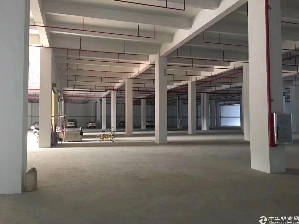 海珠区新出首层标准厂房30000方可分租