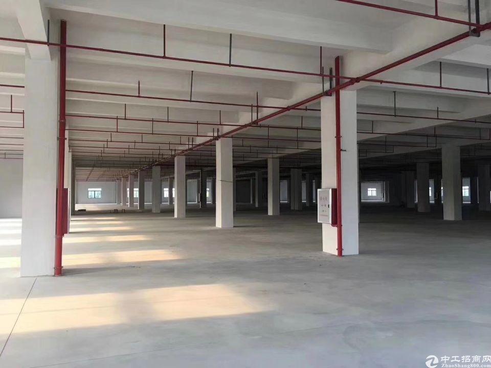 海珠区新出首层标准厂房30000方可分租-图3