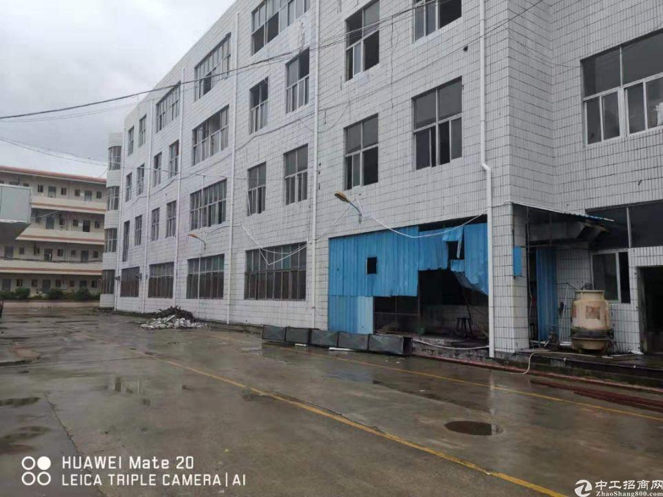 深圳市坪山区龙田街道,厂房实际面积出租