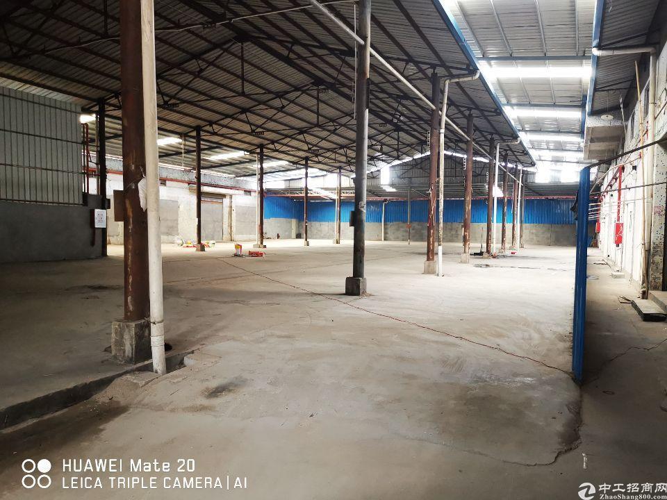 塘厦镇横塘独栋钢构厂房出租可停10部车