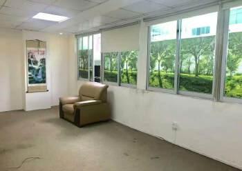 龙华油松220平方,5+1格局适合养生馆美容行业图片5