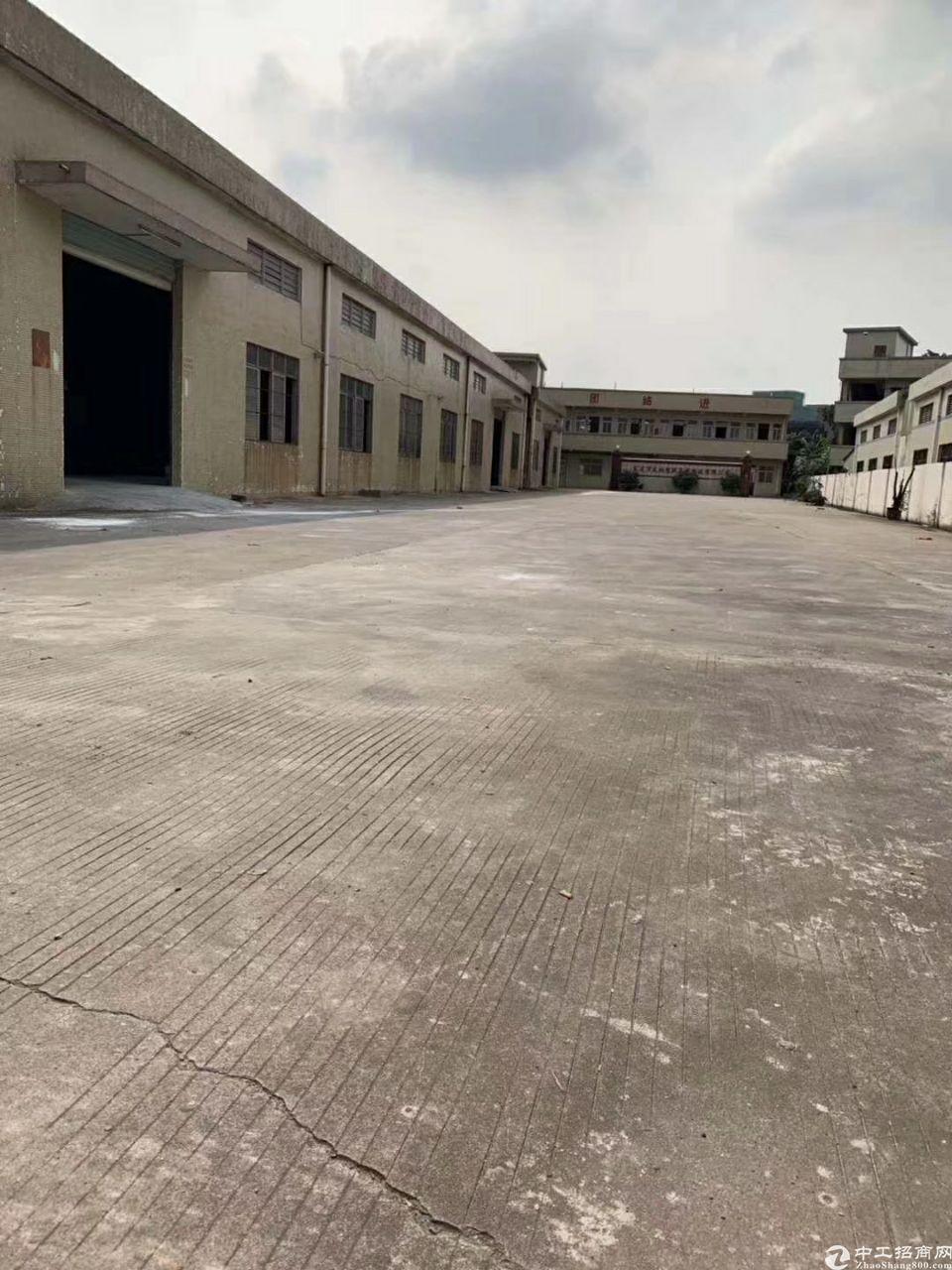 大朗镇3850平米独院钢构厂房出租