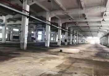 龙岗新出4s店展厅物流仓20000平招租图片5