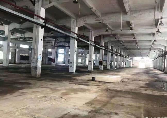 龙岗新出4s店展厅物流仓20000平招租