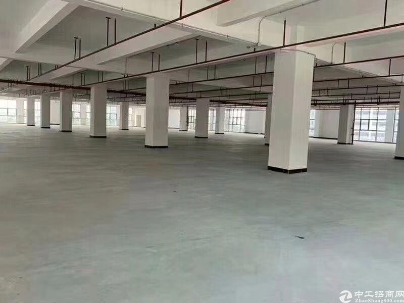 长安镇沿江高速出口附近标准一楼物流仓库