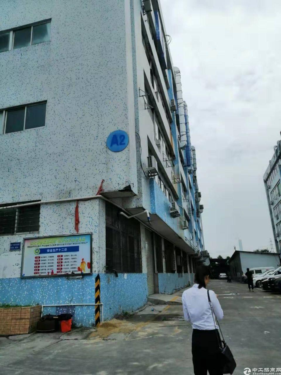 南浦东新高速出口新出2400平方整层厂房仓库