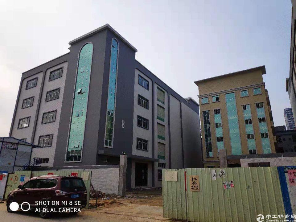 园洲独院标准厂房1-5层8000平米,宿舍1200平米