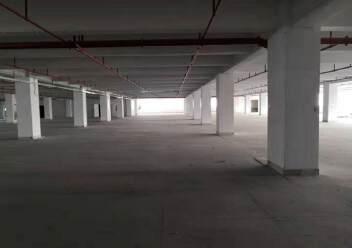 石岩标准仓库14300平,大小可分租,带卸货平台,消防喷淋图片2