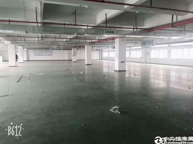 虎门沿江高速花园式厂房精装修16元带环保批文污染行业的天堂-图6