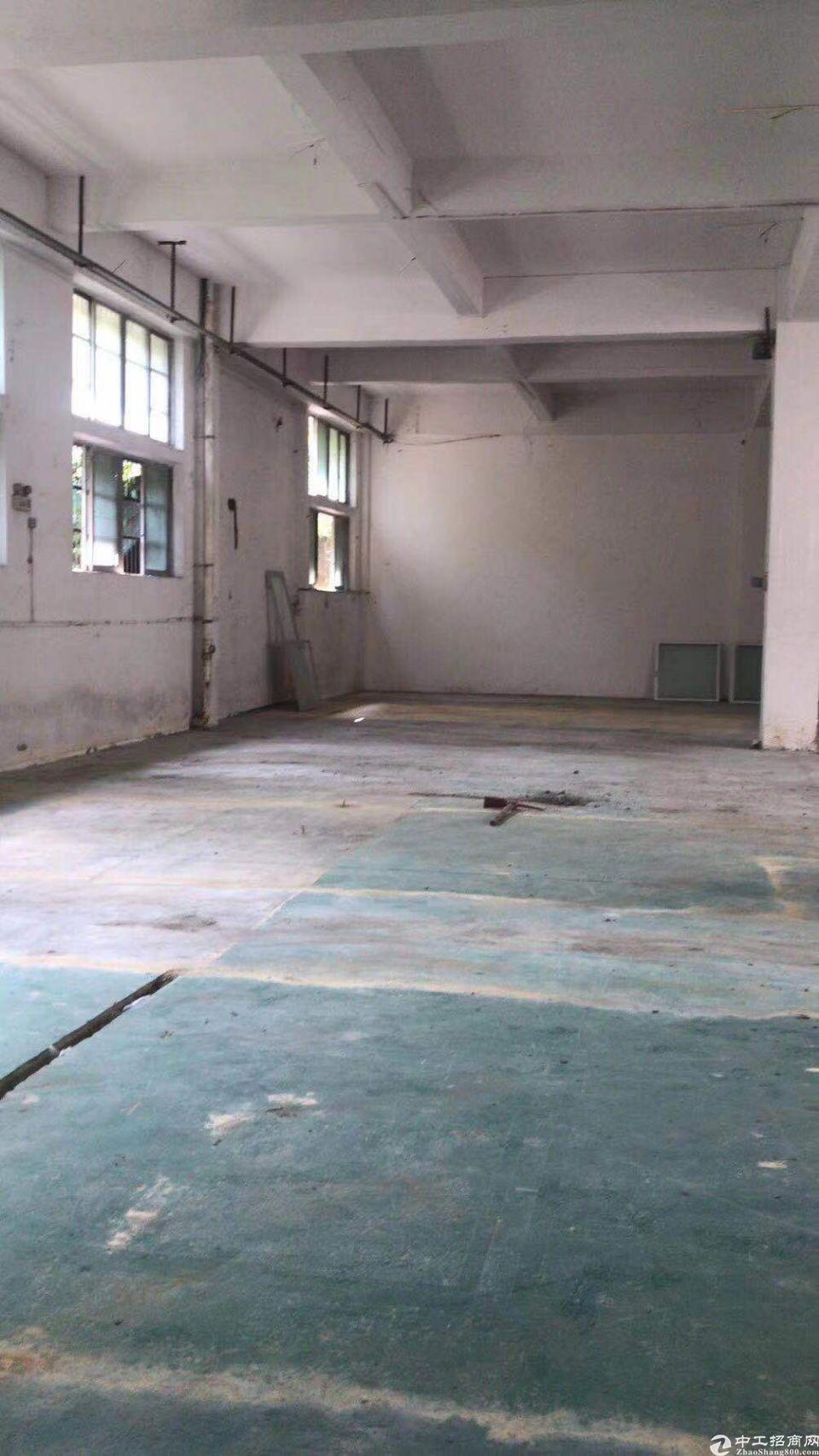 番禺钟村新出1楼厂房300平米招租