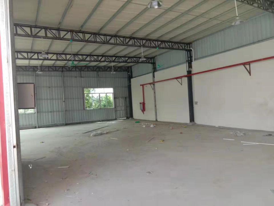 茶山镇工业园单一层 厂房面积: