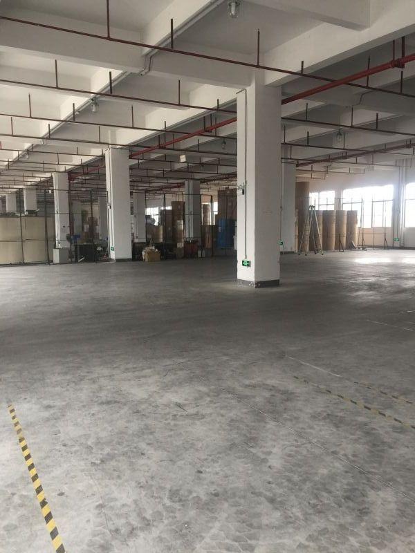 新出原房东标准厂房一楼1330平方