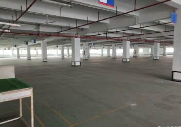 观澜桂花高速入口处新出花园式标准厂房4500平方出租!图片5
