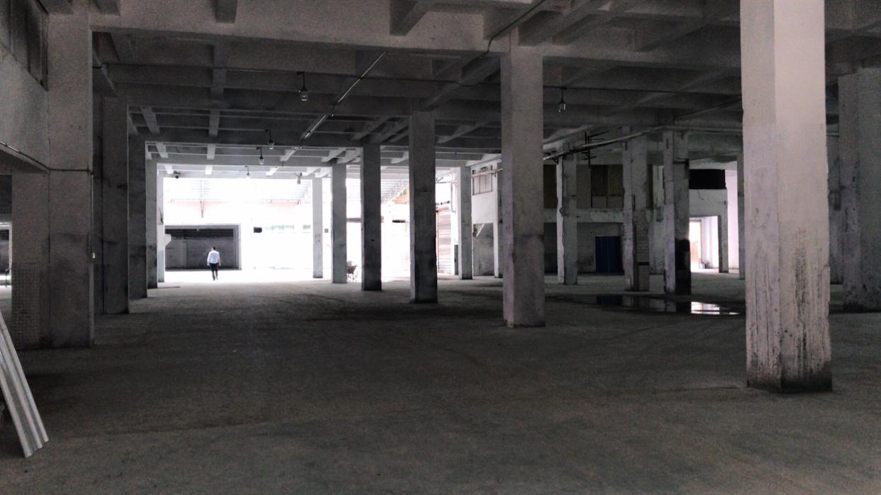 新塘新出单一层带卸货平台9000方仓库厂房出租可分租