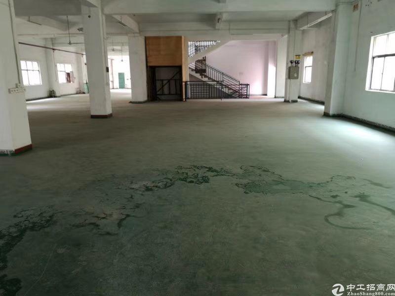 陈江镇500平方仓库低价出租