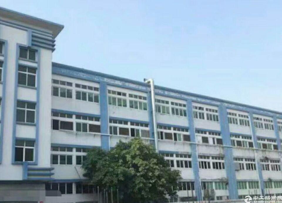 广州增城区集体土地出售八年回本