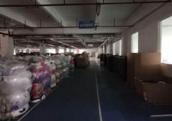 观澜桂花高速入口处新出花园式标准厂房4500平方出租!图片2