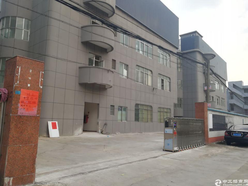 原房东全新厂房出租,二楼和三楼