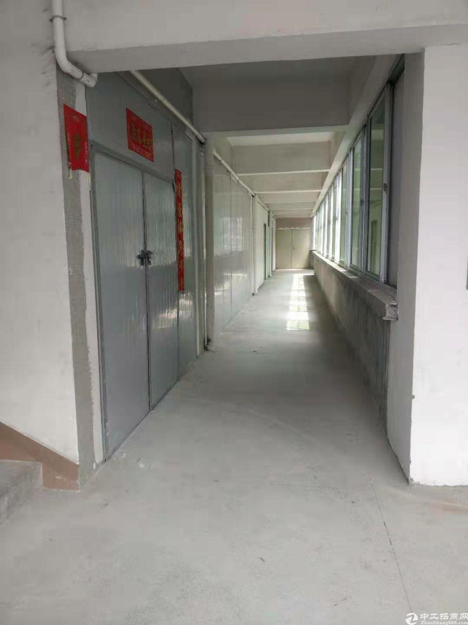 东莞市东城街道温塘新出三楼1300平方厂房
