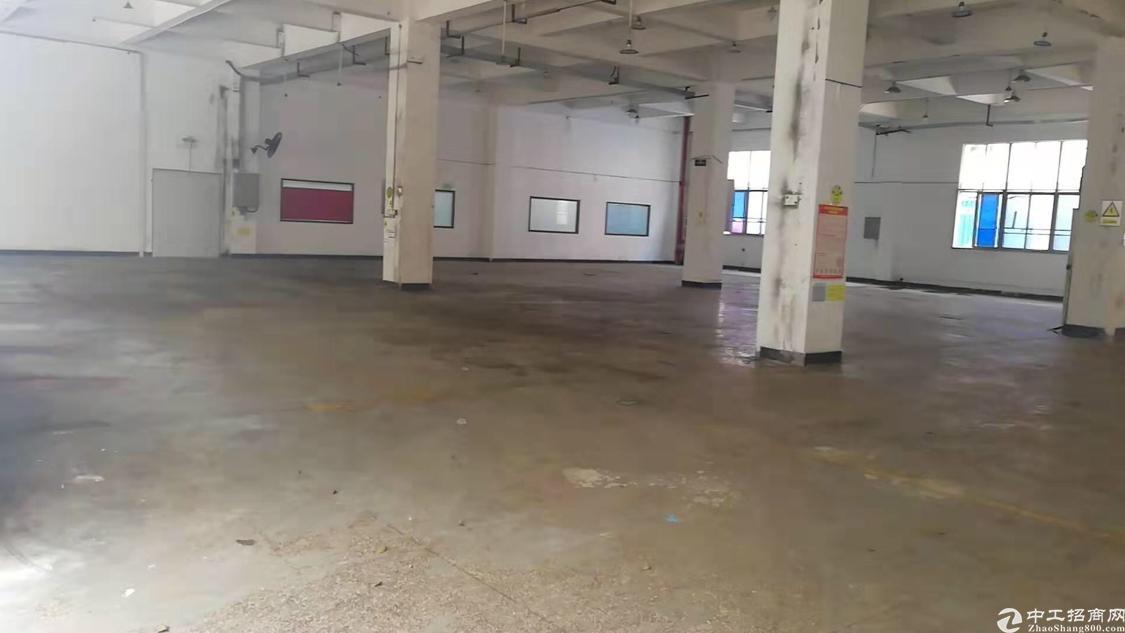 龙华新百丽附近新出楼上1700平适合仓库
