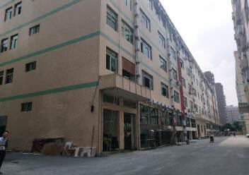 西乡黄麻布社区楼上新出400平厂房出租图片4